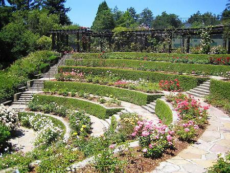 Oakland berkeley san fransisco i am from california for 50ft garden design